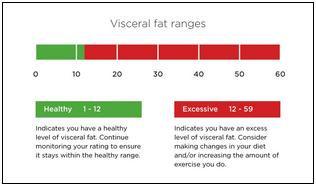 visceral-fat-ranges (1).png